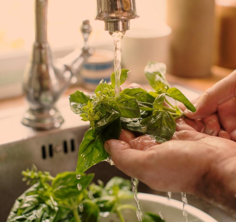 Chlorine Tablets for Food & Fruits Sanitation